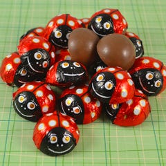 Milk Chocolate Peanut Butter Lady Bugs